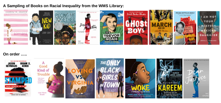 images of books on racial inequality
